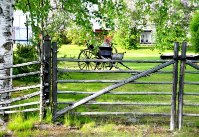 swedish-summer-820302_960_720